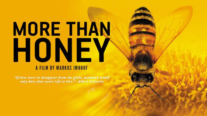More_Than_Honey3